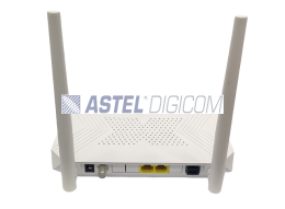 Astel XPON ONU Home Gateway Unit RT 9602